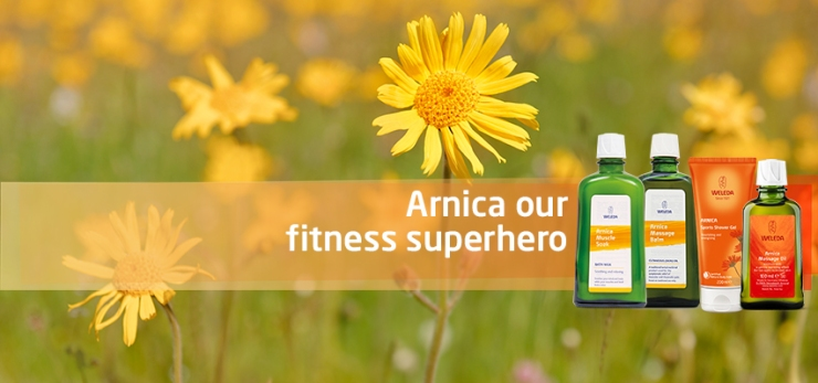 arnica-banner1 (1)